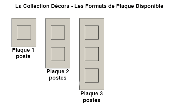 Format de plaque disponible